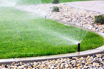 Landscape Irrigation and Drainage