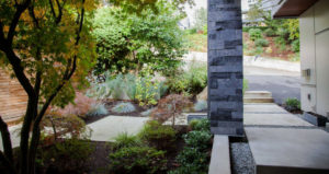Need Landscaping Services in Vancouver?